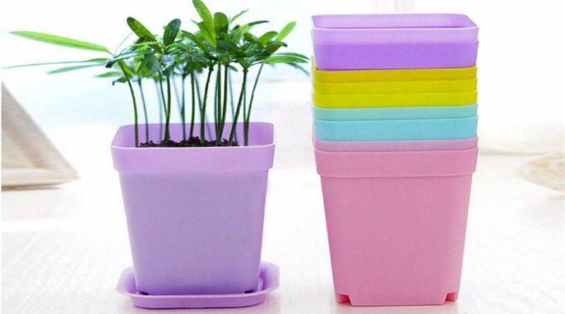 گلدان پلاستیکی برای نهال