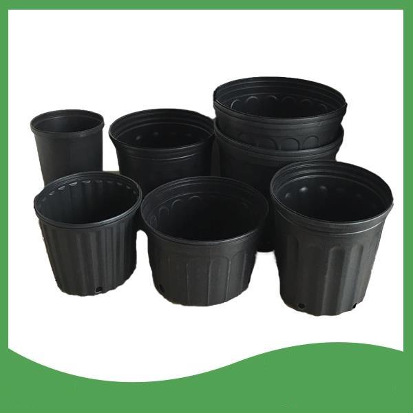 خرید گلدان پلاستیکی ارزان گلخانه ای